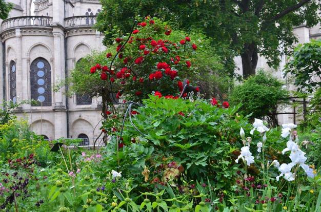 Ouverture et visites exceptionnelles du jardin medieval - Deco jardin rouscht saint denis ...